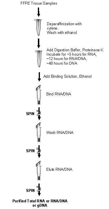 isolation of genomic dna from animal Exp cell res 1990 oct190(2):294-6 rapid isolation of genomic dna from  animal tissues konat g(1), gantt g, laszkiewicz i, hogan el author information.