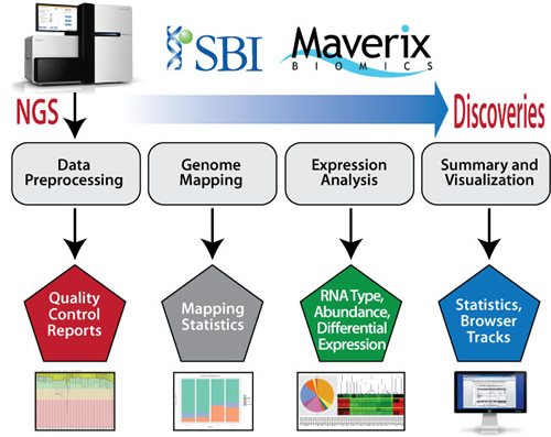 Exosome RNA Illumina NGS Sequencing and ysis Service ... on