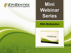 RNA Methylation Webinar